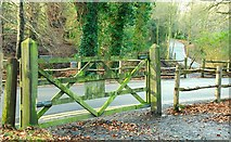 J4681 : Gate, Crawfordsburn Country Park by Albert Bridge