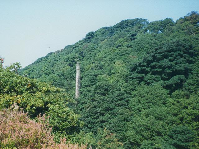 Chimney of Lumb Mill, Colden Clough