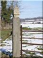 TL1488 : Gate post cap, Caldecote by Michael Trolove