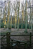 SU6679 : Junction at Little College Wood by Graham Horn