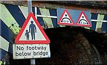 J2766 : Railway bridge, Lambeg (3) by Albert Bridge