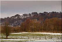 SJ9377 : Kerridge Ridge and White Nancy Monument by gareth