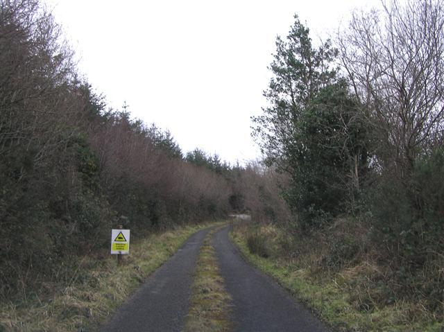 Road at Tullyderrin