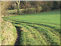 SK6544 : Tracks in the grass by Alan Murray-Rust