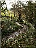 SX8950 : Stream to Mill Bay Cove by Derek Harper