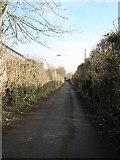 SU3521 : Canal Walk by Basher Eyre