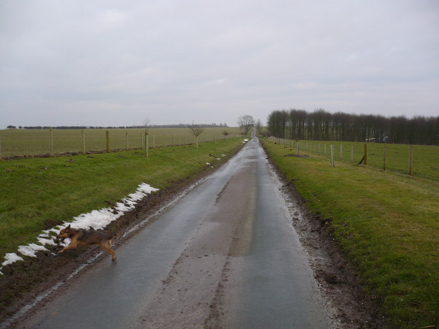 The road to the farms on Millington Wold