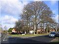 SP0279 : Northfield - Innage Road by Roy Hughes