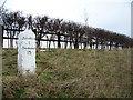 ST8704 : Milestone, A354 by Maigheach-gheal
