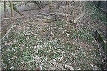 SU5985 : It's round here some where by Bill Nicholls
