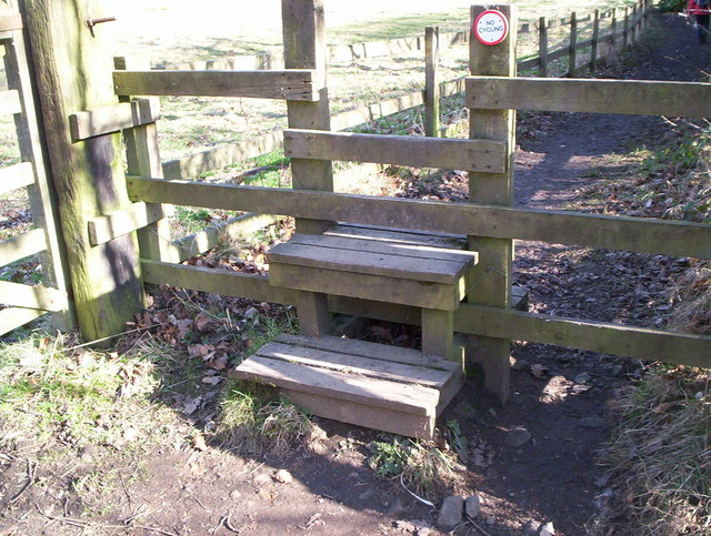 Step Stile with wooden platforms