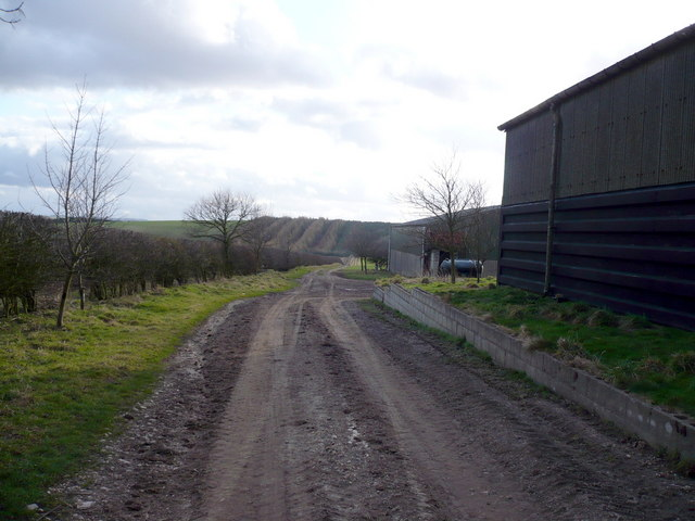 Farm buildings and track at Sherburn Wold Farm