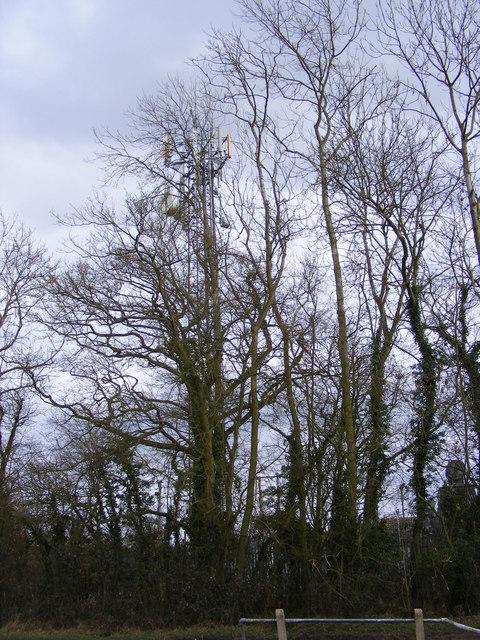 Telecommunications Mast, Deadman's Lane, Benhall