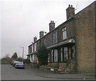 SE1734 : Sturges Grove - Killinghall Drive by Betty Longbottom
