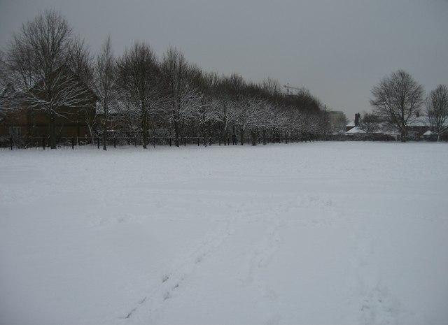 Vyne School playing fields by Sandy B