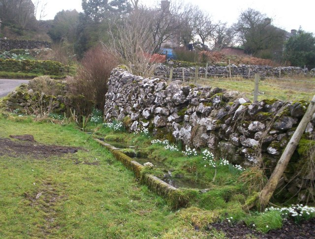 Snowdrops and Stone Troughs in Aldwark