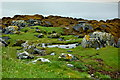 C0832 : Colourful coastal scenery at NE side of Doe Castle by Joseph Mischyshyn