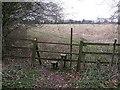 SP9205 : Stile & footpath off Ashotts Lane by Rob Farrow