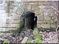 SE3906 : Tunnel under course of old railway by R BEEBY