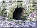 SE3906 : Entrance to tunnel under course of  old railway by R BEEBY