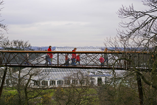 The Xstrata Treetop Walkway and Rhizotron, Kew Gardens, Surrey