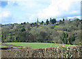SO4124 : View towards Grosmont by Pauline E