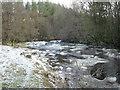 NZ0812 : River Greta east of Brignall by Andy Waddington