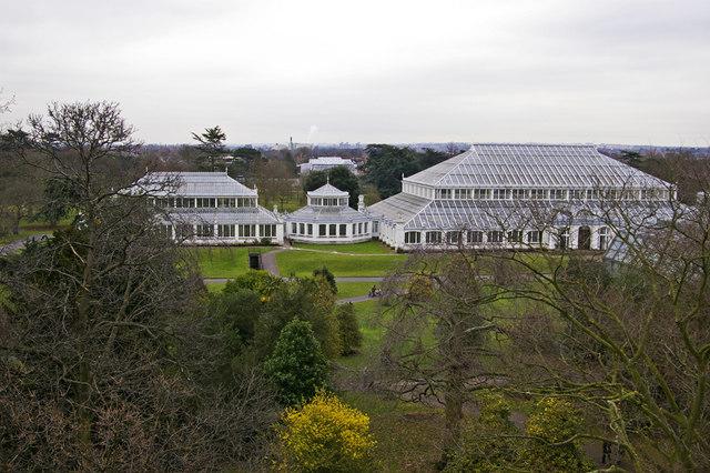 View from the Xstrata Treetop Walkway and Rhizotron, Kew Gardens, Surrey