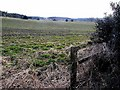 NZ0157 : Field on the Healey estate by Oliver Dixon