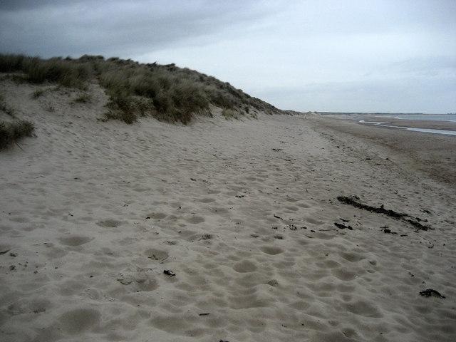 Sand Dunes of Druridge Links