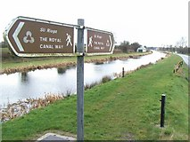N8939 : Royal Canal at Branganstown, Co. Kildare by JP