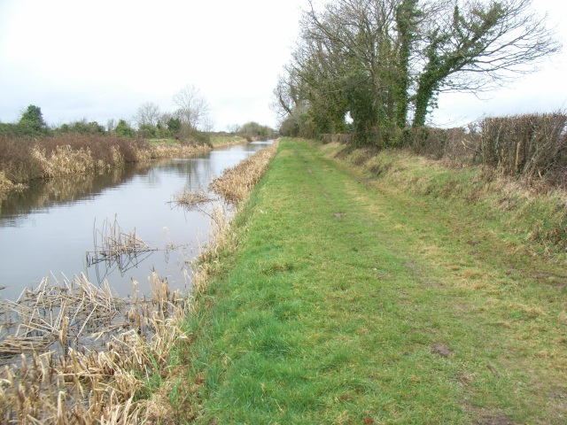 Royal Canal at Ballycurraghan, Co. Kildare