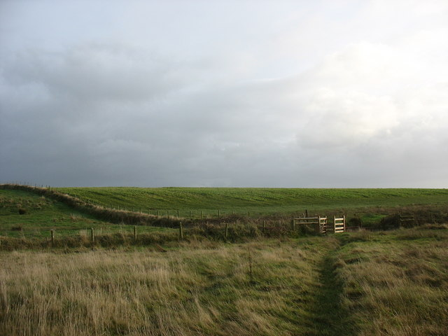 Field boundary and kissing gate west of the stream
