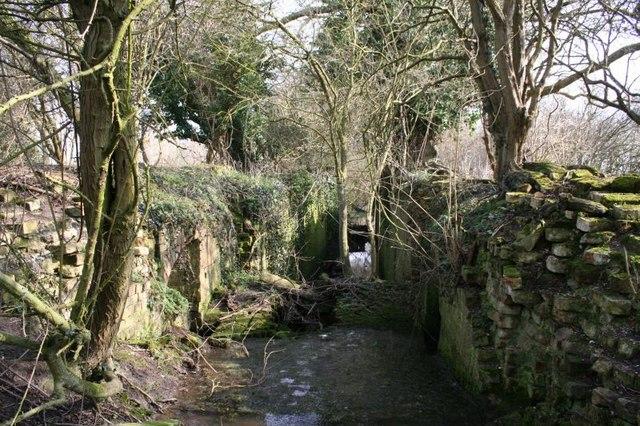 Grove Bottom Lock