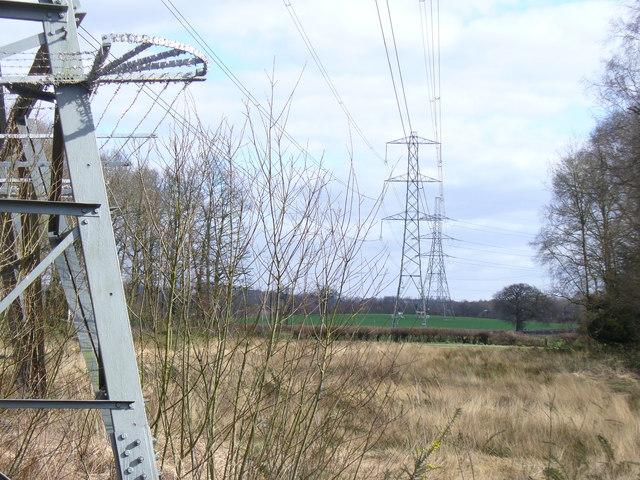 Powerline on Arbrook Common