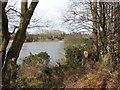 TG1820 : A large fishing lake by Evelyn Simak