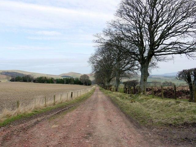 Track between Northfieldhead and Prendwick