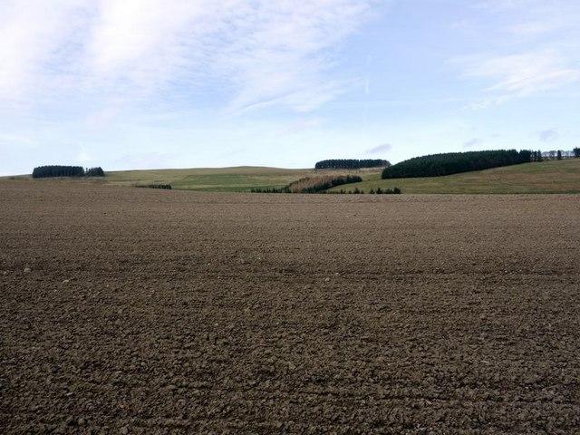 Ploughed field west of Prendwick