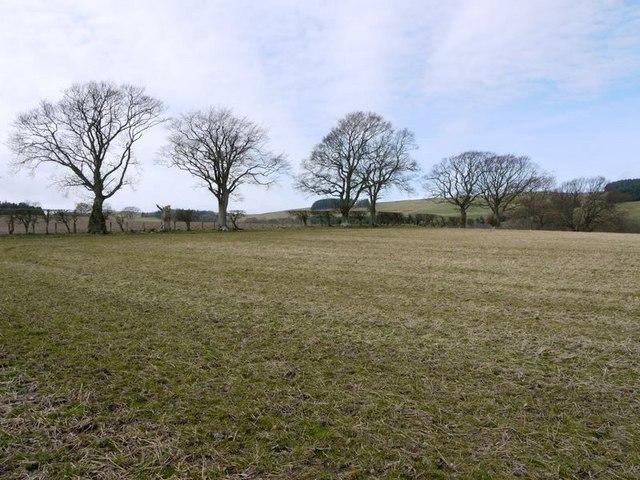 Stubble field west of Prendwick