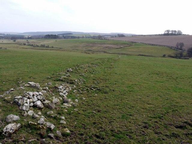 Ruined wall south of Prendwick