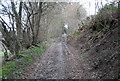 SU7530 : Standfast Lane (4) by N Chadwick