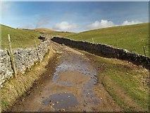 SD8172 : The Pennine Way near Horton in Ribblesdale by Steve  Fareham