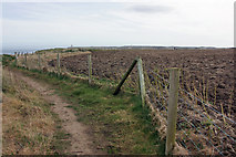 TA2272 : Footpath to Flamborough by Peter Church