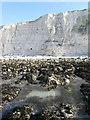 TQ3801 : Cliffs near Saltdean by Simon Carey