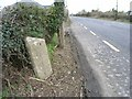 O0848 : Milestone on the N2 at Wotton, Co. Meath by JP