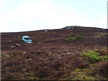 NH5533 : ...and how did THAT get there...? by sylvia duckworth