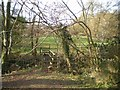SO6790 : Footbridge across the stream by Richard Law