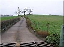 H5268 : Lane, Donaghanie by Kenneth  Allen