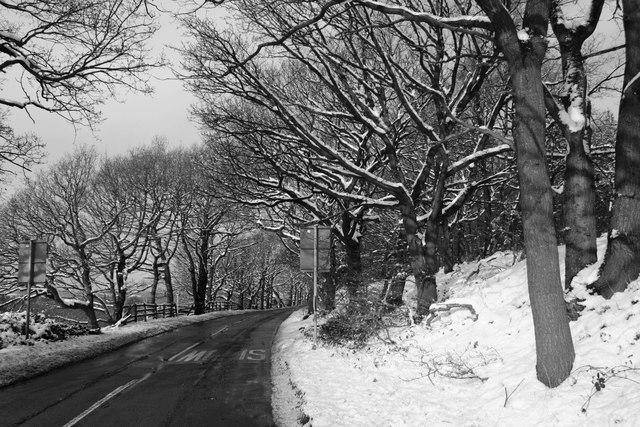 Bleak winter day on Woolley Edge