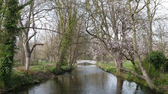 River Wandle at Morden Hall